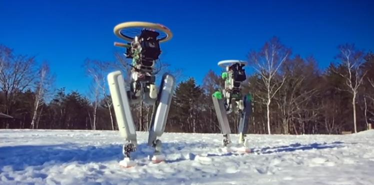 Faut-il voir en SCHAFT une possibilité de robot majordome ?