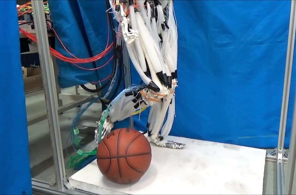 Des muscles artificiels humains pour faire marcher les robots