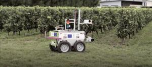 VineRobot - Planete Robots