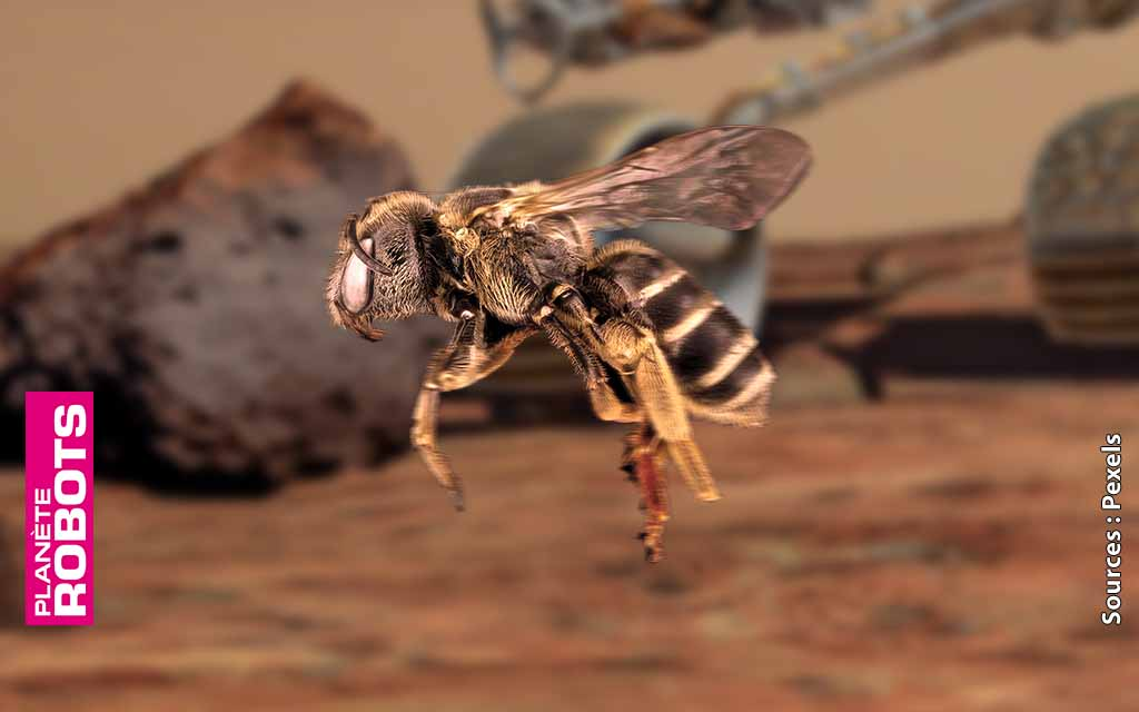 Des abeilles robots bientôt lancées dans l'exploration de Mars
