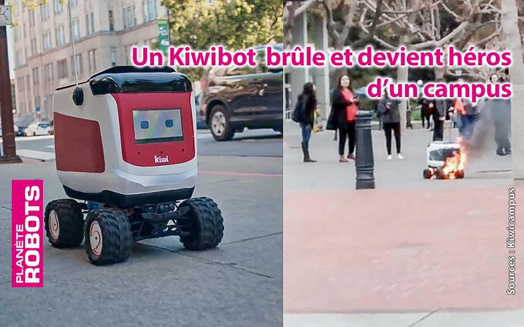 Un robot Kiwibot devient un héros à Berkeley