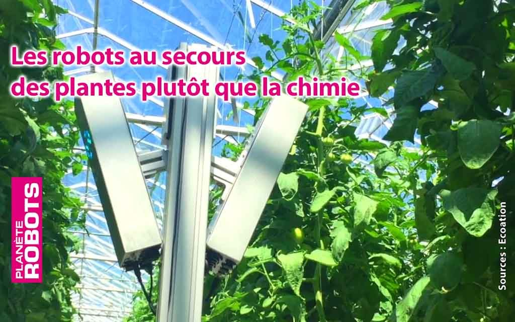 Le canada dans la course du sans pesticides avec des robots