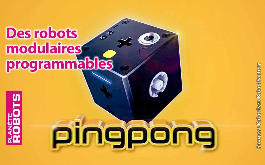 PingPong le robot modulaire
