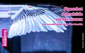 En utilisant de vraies plumes ils ont reproduit le vol réel d'un oiseau avec un robot