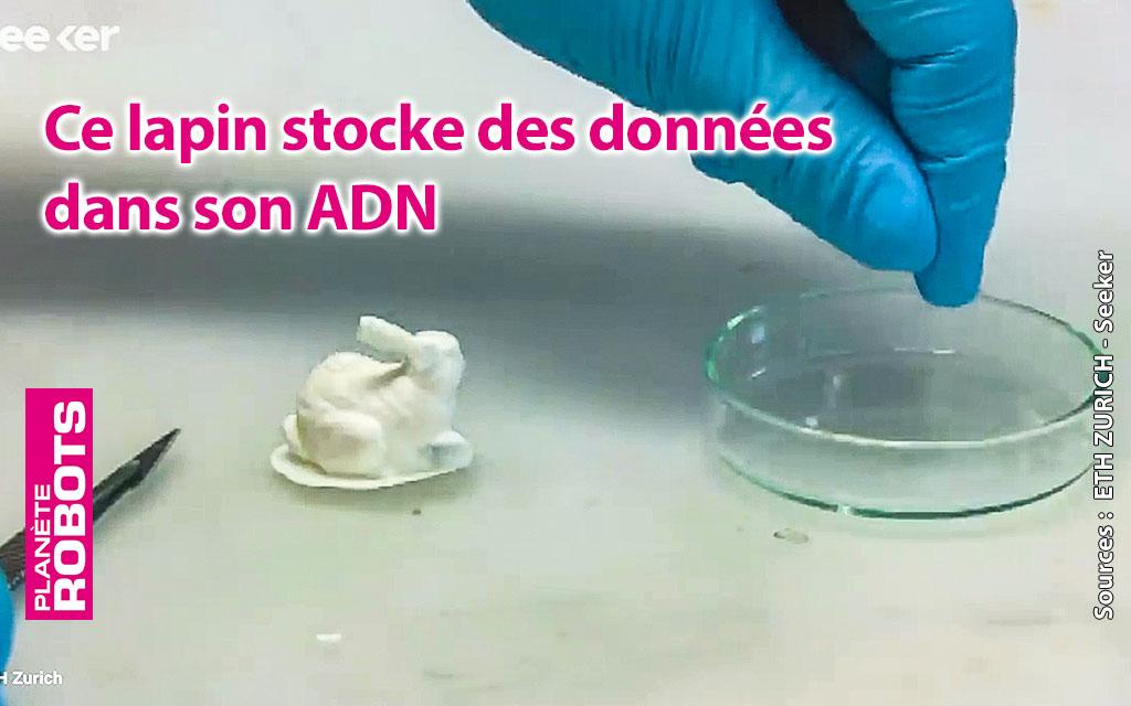 Des lapins imprimés en 3D grâce à leur G-code dans de l'ADN