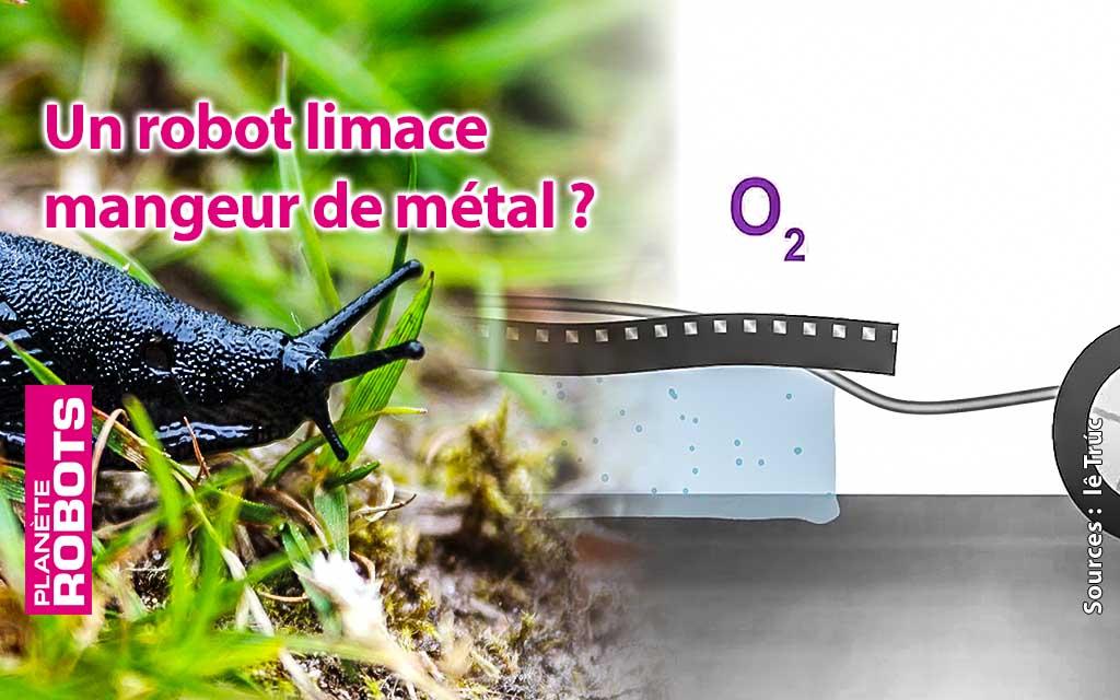 Un robot limace qui s'alimente en énergie en mangeant du métal