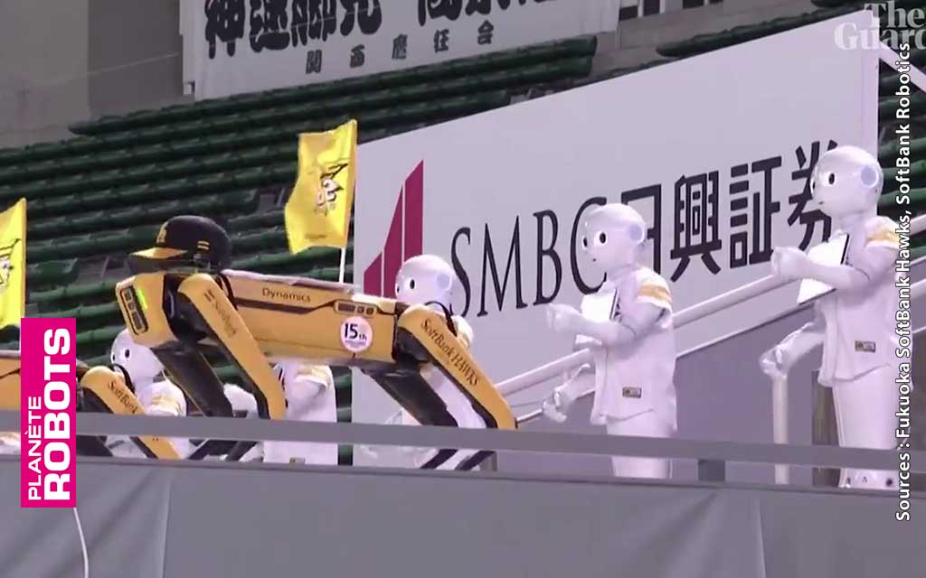 Des robots supporters d'une équipe de Baseball le temps d'un match
