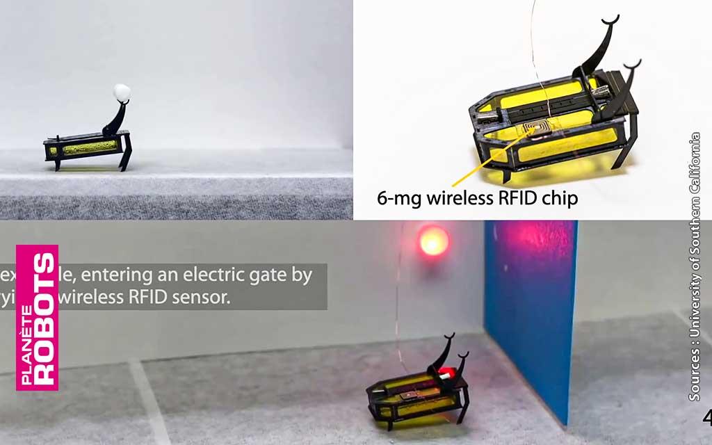 Les possibilités du robot RoBeetle