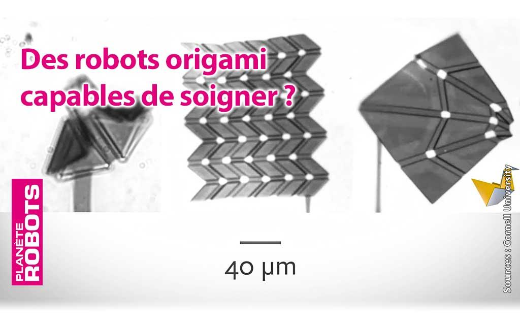 Des robots origami injectés dans le corps qui viendraient bloquer la croissance d'une tumeur.
