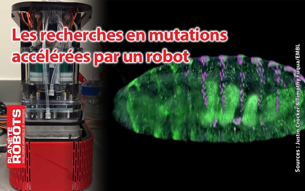 Un robot accélère l'étude des mutations des gènes