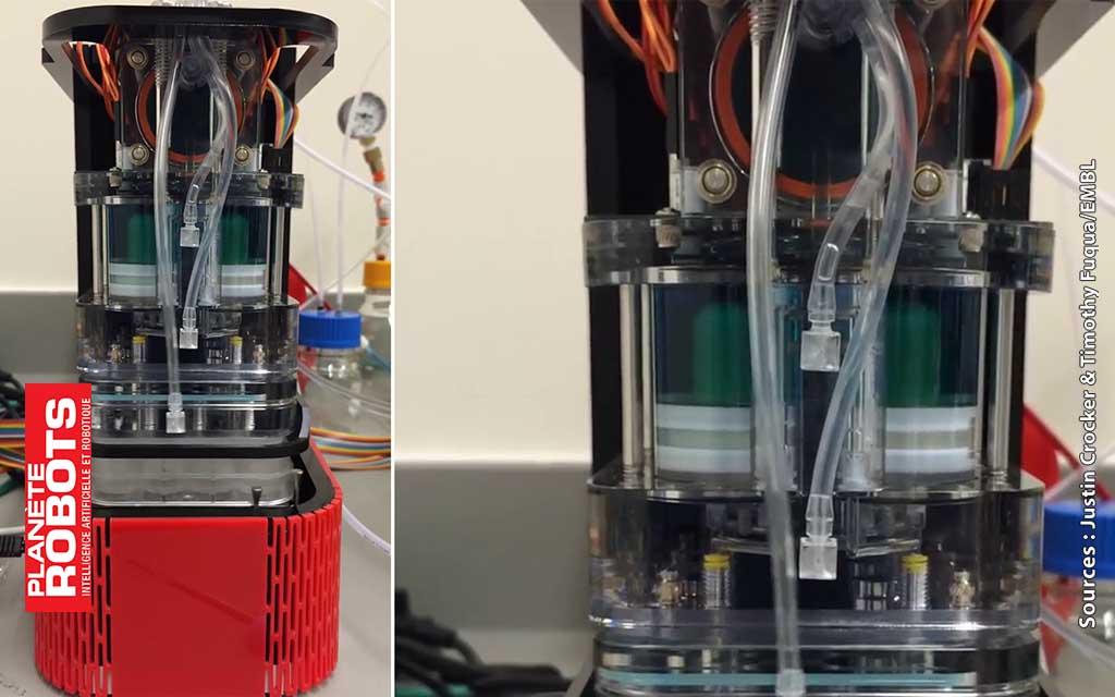 Le robot Hybridizer