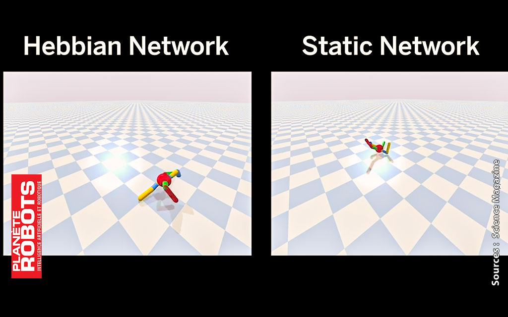 Capture de la simulation des algorithmes