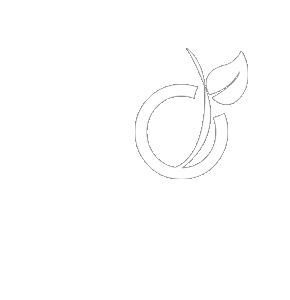 Planète Robots sur Viadeo