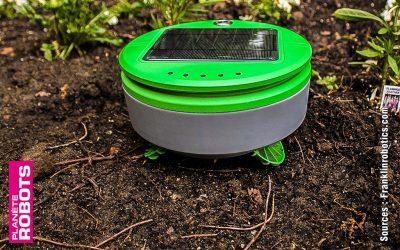 Bientôt des robots désherbeurs dans les magasins de jardinage