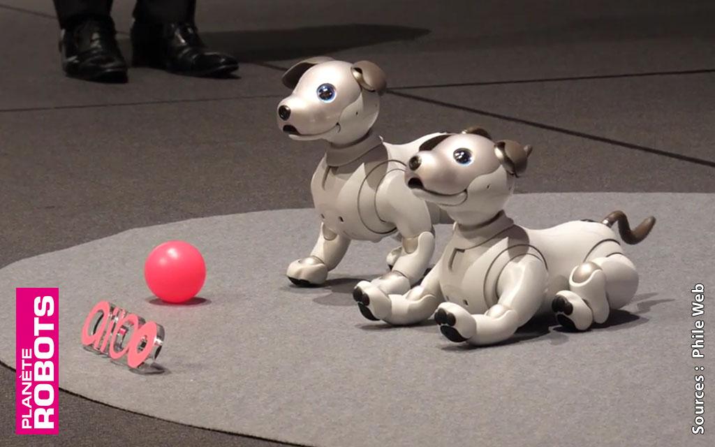 Sony dévoile son nouvel Aibo