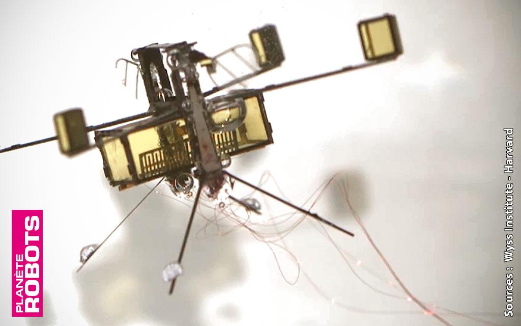 Robobee, un robot de la taille d'un insecte, qui fait des étincelles