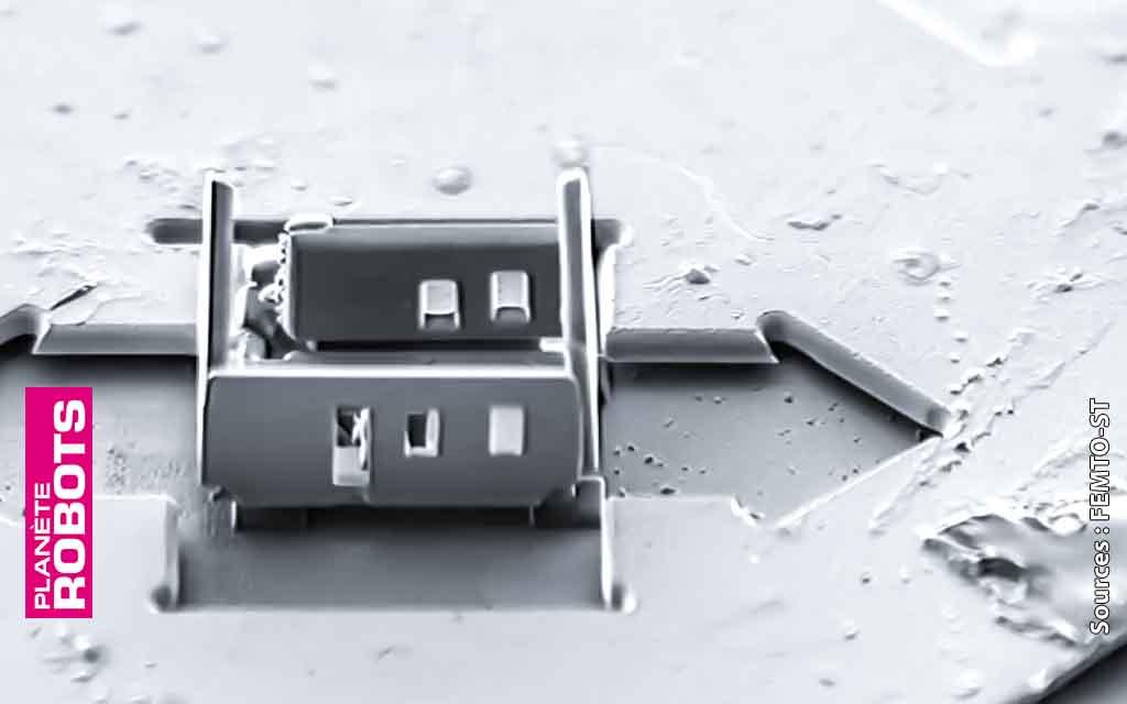 Une maison de quinze micromètres de haut