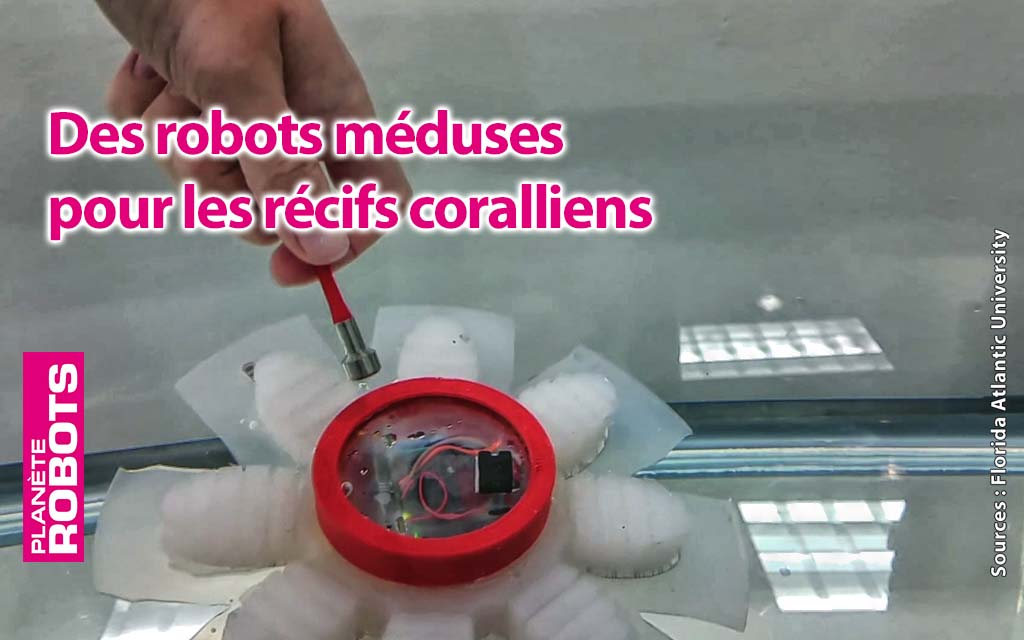 Des robots méduses pour les récifs coralliens