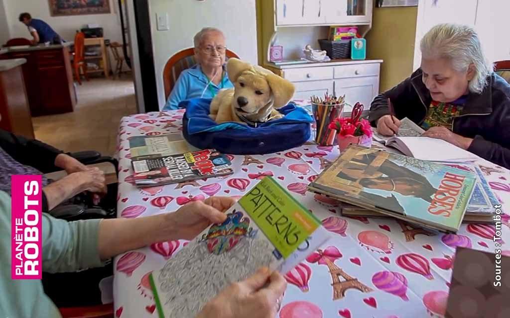 Le chien robot de compagnie Puppy a une intégration rapide au sein d'une maison de retraite