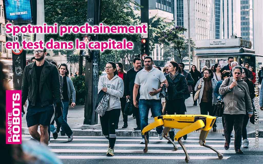 SpotMini déployé dans la capitale