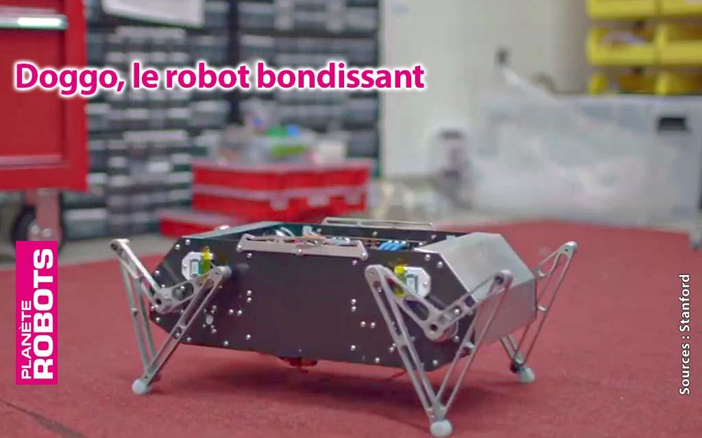 Doggo de Stanford, un robot quadrupède pour petits budgets ?