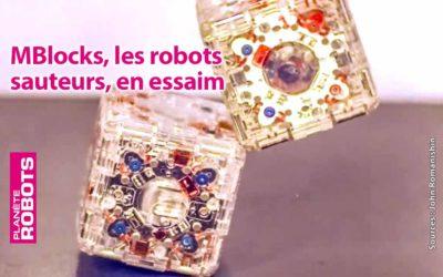 Des robots cubes pour des actions et transformations en essaim